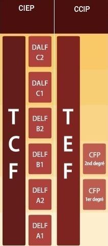 ПОДГОТОВКА К ЭКЗАМЕНАМ DELF-DALF